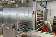 Multi-Deck-Oven-Wachtel used